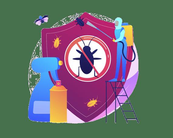 Best Pest Control in Moreton Bay