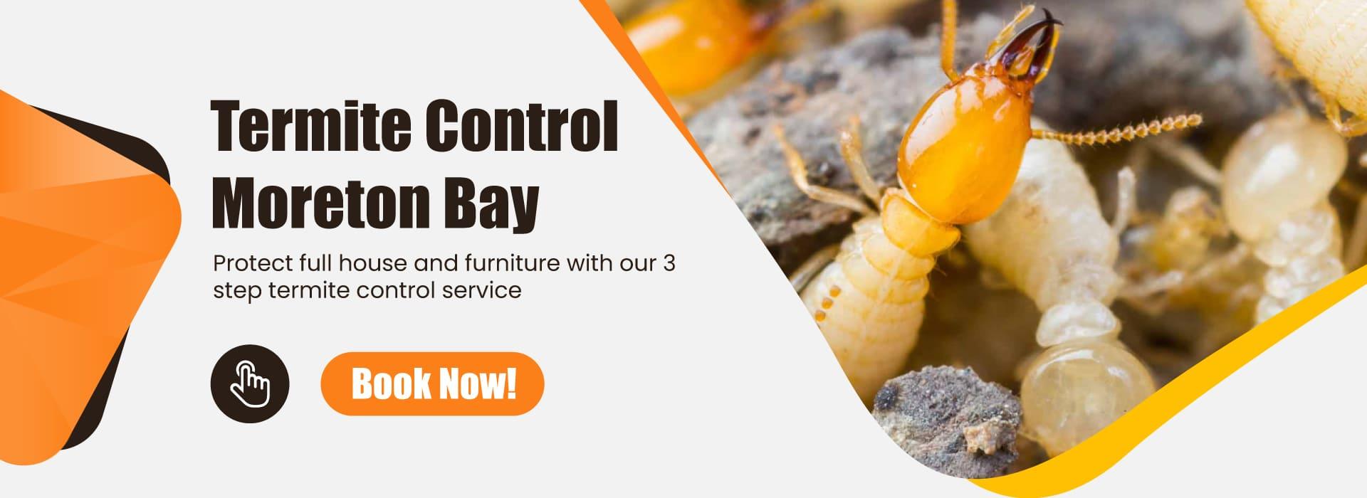 Termite inspection control